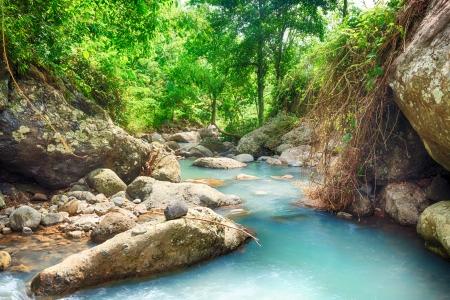 Stream among rainforest Bali  Indonesia photo