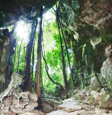 otherworldly: View from the Bat cave Stock Photo