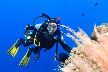 Scuba diver underwater close to coral reef photo