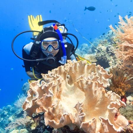 Scuba diver underwater close to coral reef Foto de archivo