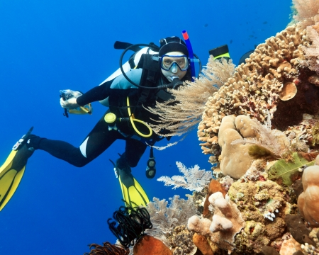 underwater diving: Scuba diver underwater close to coral reef Stock Photo