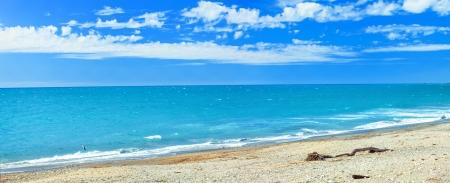 new zealand beach: Panorama of the Tasman sea coastline