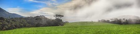 llanura: Mañana de niebla en las Llanuras de Horton. Panorama Foto de archivo