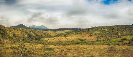 plains: Morning at Horton Plains. Panorama