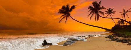 landschap: Zonsondergang over de zee. Sri Lanka. Panorama