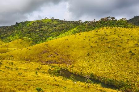 llanura: Hermosa vista de las Llanuras de Horton.