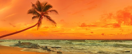 Zonsondergang over de zee. Sri Lanka. Panorama