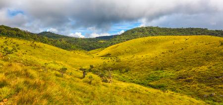llanura: Hermosa vista de las Llanuras de Horton. Panorama