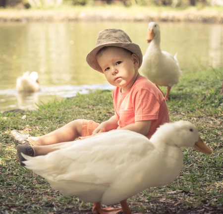 Boy and geese near lake. Mauritius photo