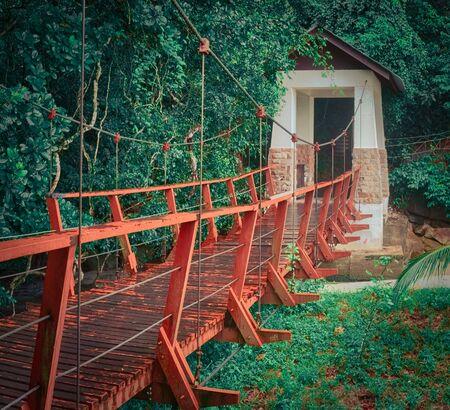 Footbridge at Penang national park at rainy day, Malaysia