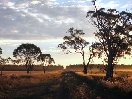 Country road at sunset, outback Queensland Australia