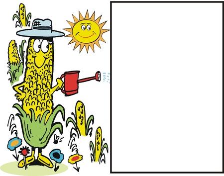 corn flower: happy corncob in garden