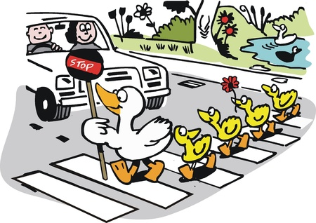 the crossing: cartoon of mother duck with ducklings crossing road Illustration