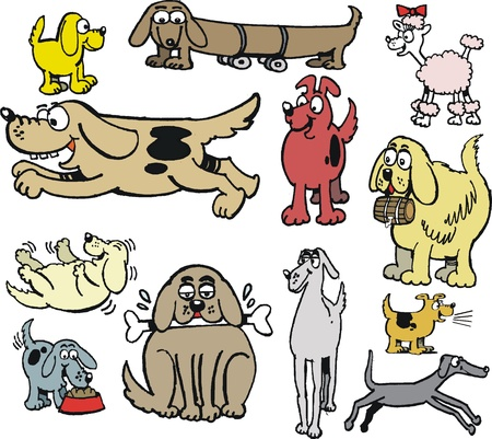 Vector cartoon of different types of dogs Vector