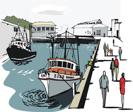 Vector illustration of Wellington boat harbor, New Zealand