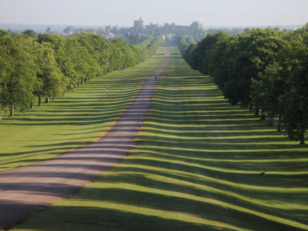 receding: View of the Long Walk, Great Windsor park, England