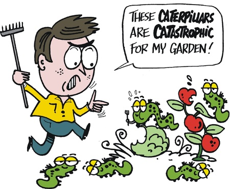 tomato caterpillar: Vector cartoon of frustrated gardener with pests Illustration