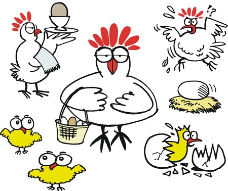 humourous: Vector cartoon of funny hens with eggs and chickens  Illustration