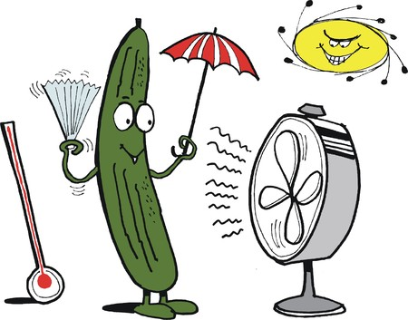heatwave: Vector cartoon of cucumber keeping cool with fan