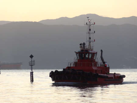 early morning: Early morning scene featuring Wellington harbour tug New Zealand