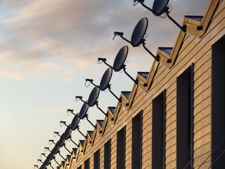 concave: Row of cable television receiving dishes on rooftop