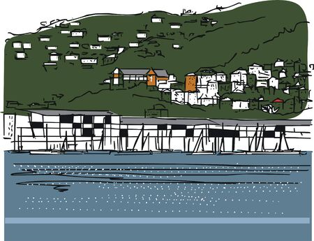 harbor: Vector illustration of Wellington harbour and hills New Zealand