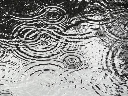Rain ripples on pond making circular patterns Archivio Fotografico
