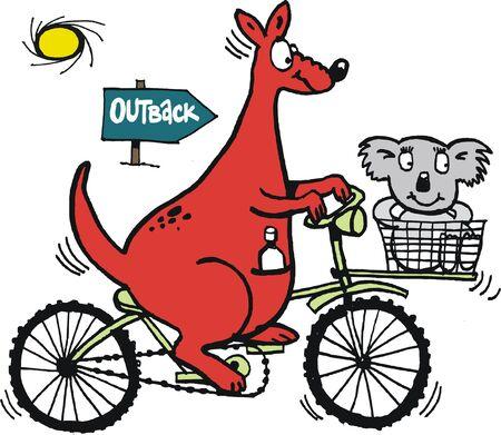 red kangaroo: Vector cartoon of red kangaroo on bicycle