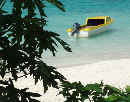 secluded: Boat with outboard motor moored in secluded cove, Vanuatu