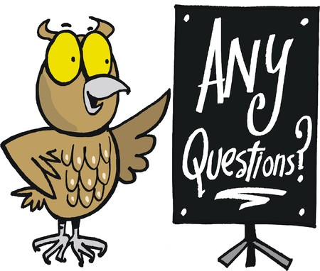 introducing: cartoon of wise owl asking for any questions