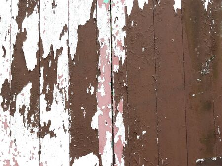 paling: Weathered and peeling paint on old fence