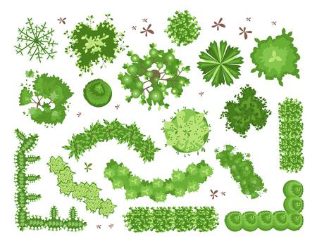 Set van verschillende groene bomen, struiken, hagen. Bovenaanzicht voor projecten voor landschapsontwerp. Vectorillustratie, geïsoleerd op een witte achtergrond.