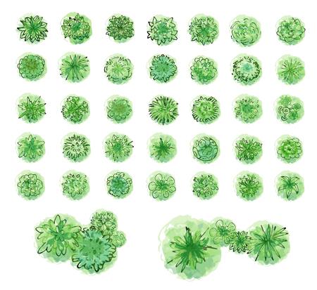 Varios árboles verdes, arbustos y arbustos, vista superior para el plan de diseño de paisaje. Ilustración vectorial, aislado sobre fondo blanco.