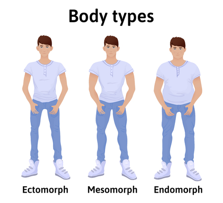 proportions of man: Constitution of human body. Man body types. Endomorph, ectomorph and mesomorph. Young men in t-shirts and jeans. Vector illustration, isolated on white background.
