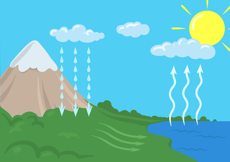 Vector schematic representation of the water cycle in nature, hydrological cycle. Infographics Illustration. Vettoriali