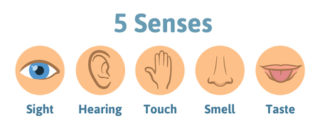 Set of five human senses icon: vision, hearing, smell, hearing, touch, taste. Eye, ear, hand, nose and mouth with tongue. Simple icons in circles, vector illustration isolated on white background