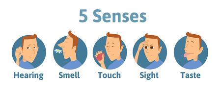 Conjunto de icono de cinco sentidos humanos audición, olfato, tacto, visión, gusto. Iconos con el personaje de hombre divertido en círculos. Ilustración de vector para niños, aislado sobre fondo blanco.