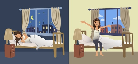 Cute young woman sleep at night in the bedroom and wake up in the morning. Vector illustration. Illustration