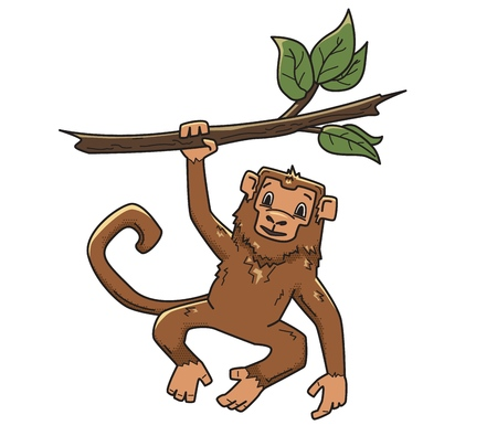 Monkey hanging on a tree branch. Animal character, vector illustration, isolated on white background. Illustration