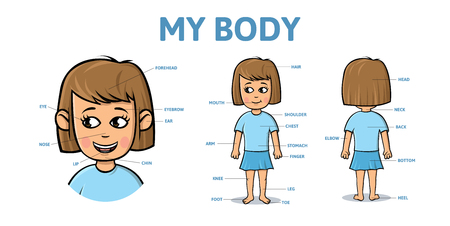 Vocabulary for parts of female body. Cartoon girl body with description. Colorful flat vector illustration, horizontal.