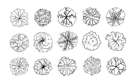 Various trees, bushes and shrubs, top view for landscape design plan. Vector illustration, isolated on white background. Black and white sketch. Stok Fotoğraf - 132057236