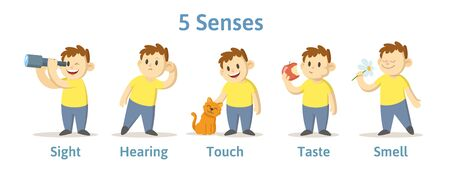 Set of 5 senses in cartoon character cards. Sight, smell, touch, hearing, and taste explained with coloful cards. Flat vector illustration, isolated on white background.