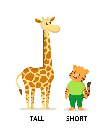 Words tall and short textcard with cartoon giraffe and tiger characters. Opposite adjectives explanation card. Flat vector illustration, isolated on white background. Vecteurs