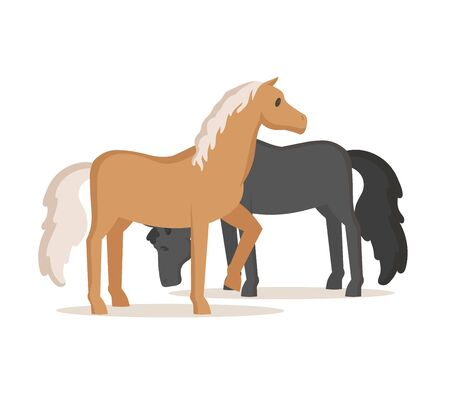 Horses grazing. Colorful flat vector illustration, isolated on white background.