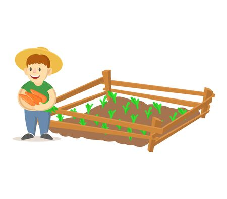 Smiling farmer boy wearing straw hat holding carrots and growing plants in garden beds. Homegrown vegetables, eco friendly farming. Colorful flat vector illustration, isolated on white background. Illustration