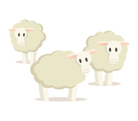 Flock of three sheep. Colorful flat vector illustration, isolated on white background.