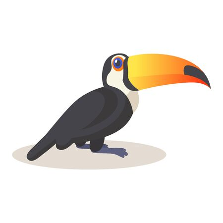 Cute toucan sitting. Colorful flat vector illustration, isolated on white background.