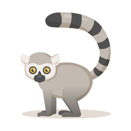 Cute African lemur. Colorful flat  illustration, isolated on white background.