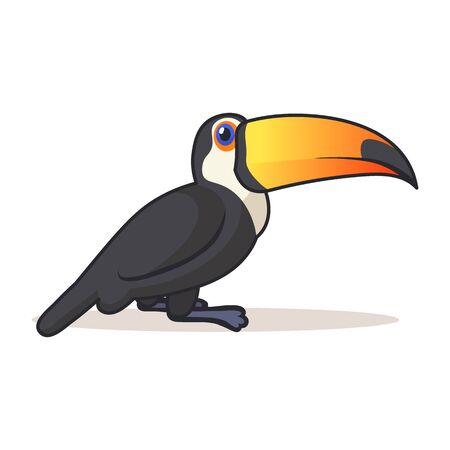 Cute toucan sitting. Colorful flat vector illustration with outline, isolated on white background.