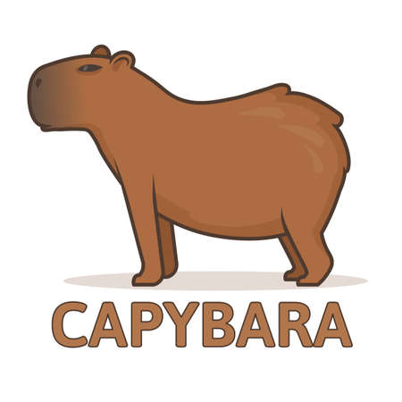 Cute capybara on a white background. Colorful flat vector illustration with outline, isolated. Ilustração